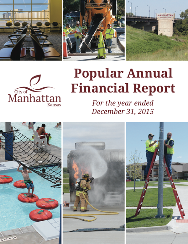 Popular Annual Financial Report 2015