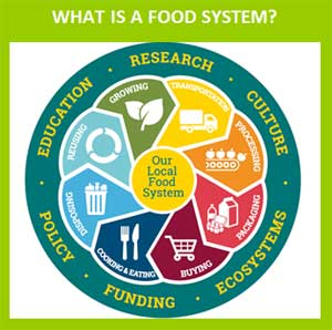 graphic representing a local food system