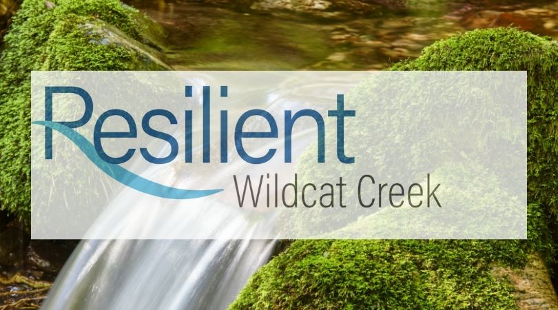 Resilient Wildcat Creek logo