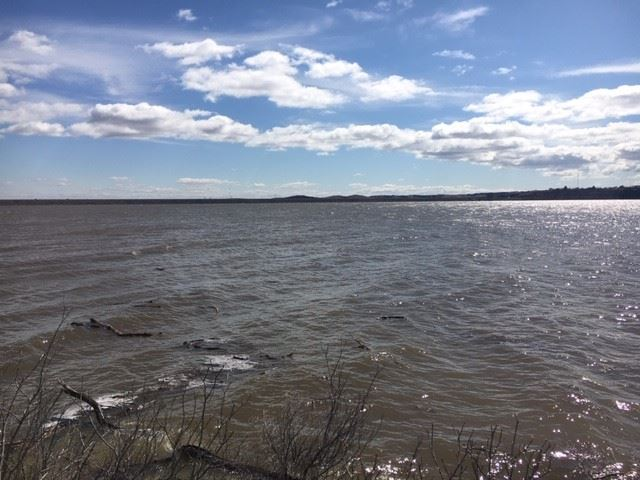 photo of Tuttle Creek Lake from the east shore