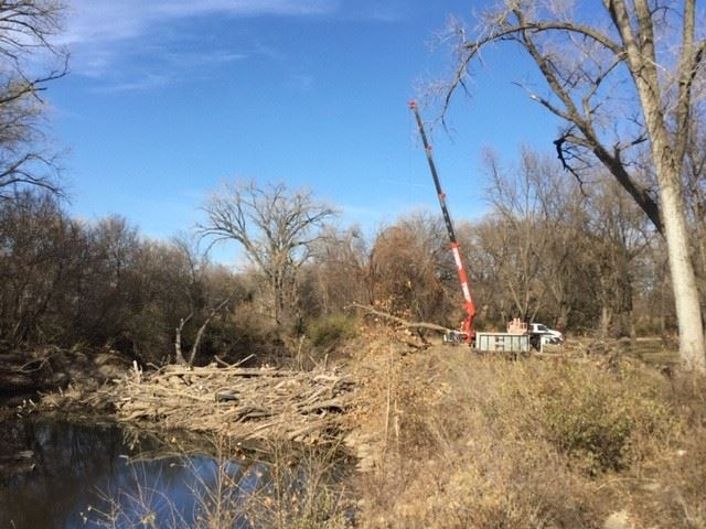 photo of log jam and crane