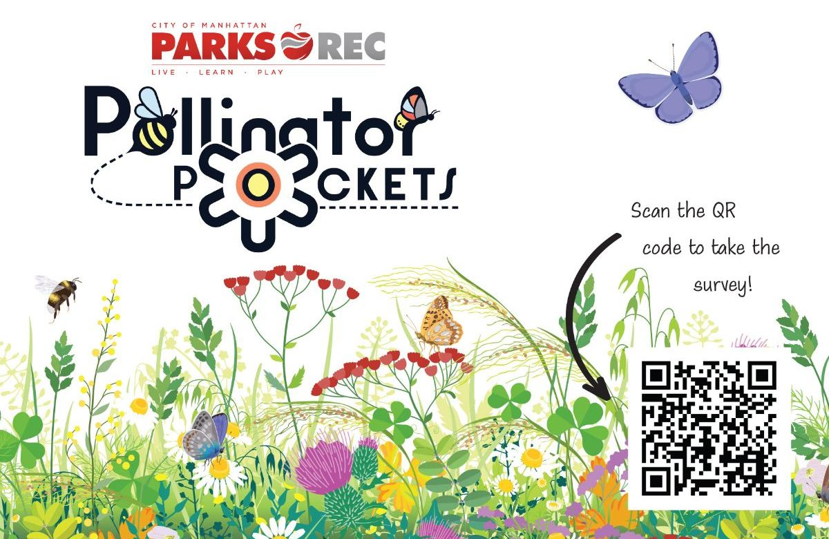 pollinator pockets graphic